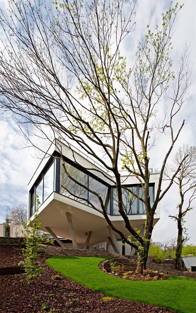 01_HOUSE-BETWEEN-THE-TREES_TOMAS-MANINA
